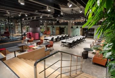 nurus cozone ofis